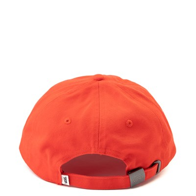 Alternate view of Vans Dad Hat