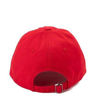 Alternate view of NASA Dad Hat